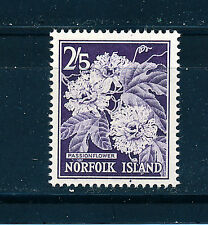 NORFOLK ISLAND 1960-62 DEFINITIVES SG33 2s.5d (FLOWER)  MNH