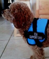 ESA Support Dog Vest Blue Comes With 2 Patches Extra Small XS With Glue Stain.