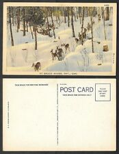 Old Canada Postcard - Bruce Mines, Ontario - Deer in the Snow