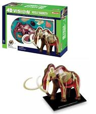 Visible WOOLY MAMMOTH 4D Vision Anatomy 3D Dinosaur Puzzle Model Biology science