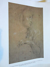 Print  {Young Woman in Profile} by RUBENS 11X14 Nat'l Gallery, Wash. #B-30, 458
