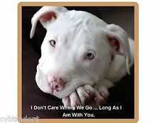Pit Bull Terrier Dog Don't Care  Refrigerator / Tool Box / Locker Magnet