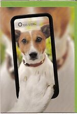 Klappkarte: Jack Russel Terrier - Selfie mit Handy, sehr hübsche Karte, de luxe