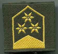 Sonntag: esercito federale: rango cinghie: colonnello .1 paia
