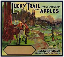 CRATE LABEL WATSONVILLE LUCKY TRAIL MINER VINTAGE PIONEER PROSPECTOR 1920S