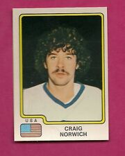 VERY RARE 1979 PANINI TEAM USA CRAIG NORWICH HOCKEY STICKER  (INV# 9200)
