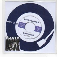(FO28) David Woodcock, Open Secret - 2014 DJ CD