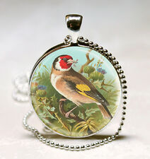 GoldFinch Sitting on Tree Branch Photo Glass Dome Pendant (PD0413)