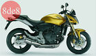 Honda CB 600 F/FA Hornet (2007) - Workshop Manual on CD (In Italian)