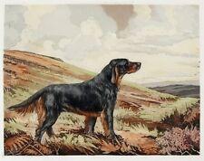 REUBEN WARD BINKS Vintage 1934 Color Aquatint Etching of Dog GORDON SETTER