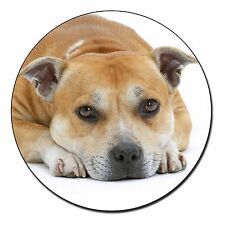Red Staffordshire Bull Terrier Dog Fridge Magnet Stocking Filler Chri, AD-SBT3FM