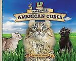Amazing American Curls (Super Sandcastle: Cat Craze)-ExLibrary