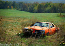1970 Dodge Super Bee Rusting in a Field  10 x 12  Photograph