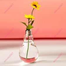 New Stand Light Bulb Shape Glass Vase Flower Plant Container Pot Home Decoration