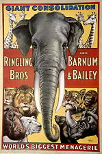 Ringling Bros Vintage Poster 1971 Circus Elephant Cats Bears Seals Hippo Rhino