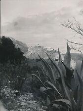 EZE c.1935 - Agaves  Le Village au loin  Alpes-Maritimes - Div 7573