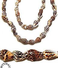 SHELL BEADS TIGER NASSA SMALL 7-12mm NATURAL BROWN WHITE BEIGE 36 inch strand