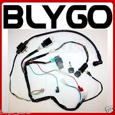 Full Kick Start Engine Wiring Harness Loom +Light Wire 125cc 140cc PIT Dirt Bike