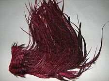Metz Grizzly Saddle hackle Feather extensions Long Cranberry maroon fast ship