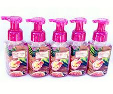 5 Bath Body Works WATERMELON LEMONADE Gentle Foaming Hand Soap GARDEN PARTY