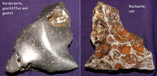 Exellenter Meteorit NWA 859 Taza, teilpoliert und geätzt, 131x95x38mm 959,9g