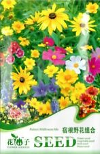 1 Bag 200 Seeds Colorful Ratoon Wild Flowers Mix Seed K001