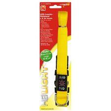 Heitech LED Collier lumineux pour chiens - jaune - 2,5 x 40-45 cm sécurité Nuit