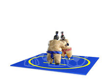 Sumo Suits with Mat Inflatable Water Slide Games Bouncy Castle