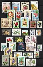 101430/ Blumen und Pflanzen - schönes Lot - o - nichts gerechnet - siehe scan