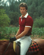 Lamas, Lorenzo [Falcon Crest] (38694) 8x10 Photo