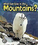 What Can Live in the Mountains? First Step Nonfiction Paperback