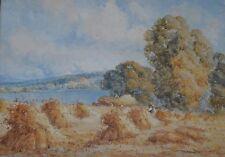 Harry PENNELL Britannico, 1879-1934 elencati artista acquerello Campo di grano in Anglesey