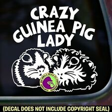 CRAZY GUINEA PIG LADY Vinyl Decal Sticker Cavy Pigs Love Car Window Wall Sign