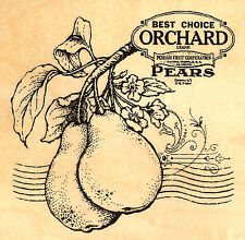 Best Choice Orchard Pears Collage Wood Mounted Rubber Stamp Stampendous NEW W084