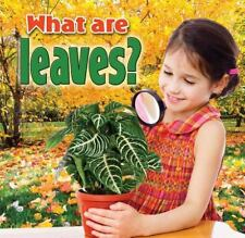 What Are Leaves? (Plants Close-Up)