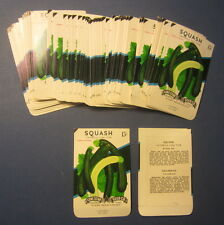 Wholesale Lot of 100 Old Vintage - SQUASH - Cocozelle - Vegetable SEED PACKETS
