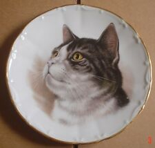 A J L Giftware Collectors Plate Tabby Cat