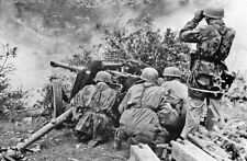 WWII B&W Photo German Anti Tank Gun and Crew In Action World War Two / 2296  NEW