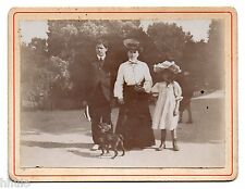 C340 Photographie originale vintage mode fashion chien dog parc
