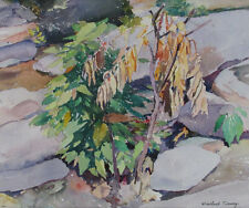 Winthrop Turney (1884-1965) Original Watercolor Signed Plant Summer 1930s