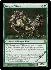 4 PLAYED Fungus Sliver - Green Time Spiral Mtg Magic Rare 4x x4