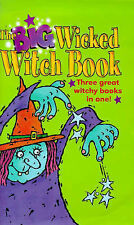 The Big Wicked Witch Book: Cleaning Witch,  Broomstick Services & Fisherwitch