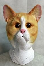Ginger Cat Mask Latex Pussy Animal Fancy Dress Stag Party High Quality Feline