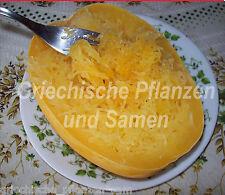 Spaghetti-Kürbis ****** Speise Kürbis ****** 5 Samen