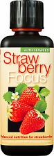 FRAGOLA Focus Pianta Cibo-Nutrienti Per Fragola Pineberry ECC. ml.300