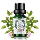 100% Pure NATURAL Professional Aromatherapy Essential Oils UK O#