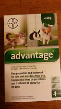 Advantage Green 4 Pack for Small Dogs 0-10 lbs  4kg