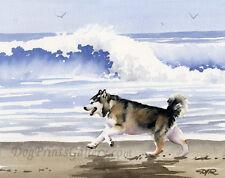 ALASKAN MALAMUTE AT THE BEACH Painting 8 x 10 ART Print Signed DJR
