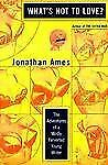 What's Not to Love?: The Adventures of a Mildly Perverted Young Writer by Ames,