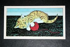 KITTEN   Vintage Illustrated Card  VGC